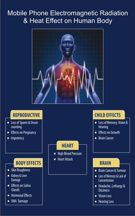 effect of radiation on human body pdf